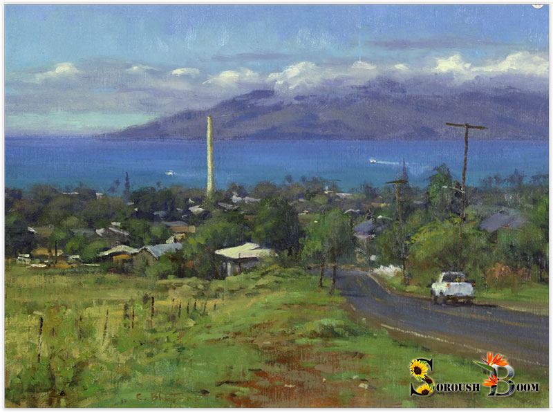 Carl Bretzke 'Above Pioneer Mill' Best Body of Work 3 of 4 & Maui County Award